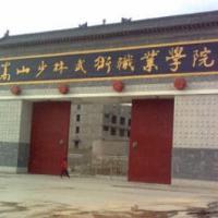 嵩山少林武术职业学院