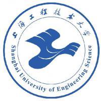 上海工程技术大学(中外合作办学)