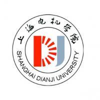 上海电机学院(中外合作办学)