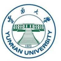 云南大学(中外合作办学)