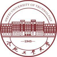 合肥工业大学(中外合作专业)