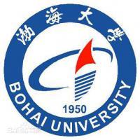 渤海大学(中外合作办学)