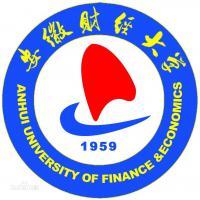安徽财经大学(中外合作办学)