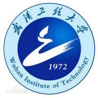 武汉工程大学(中外合作)
