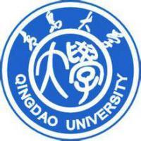 青岛大学(中外合作办学)